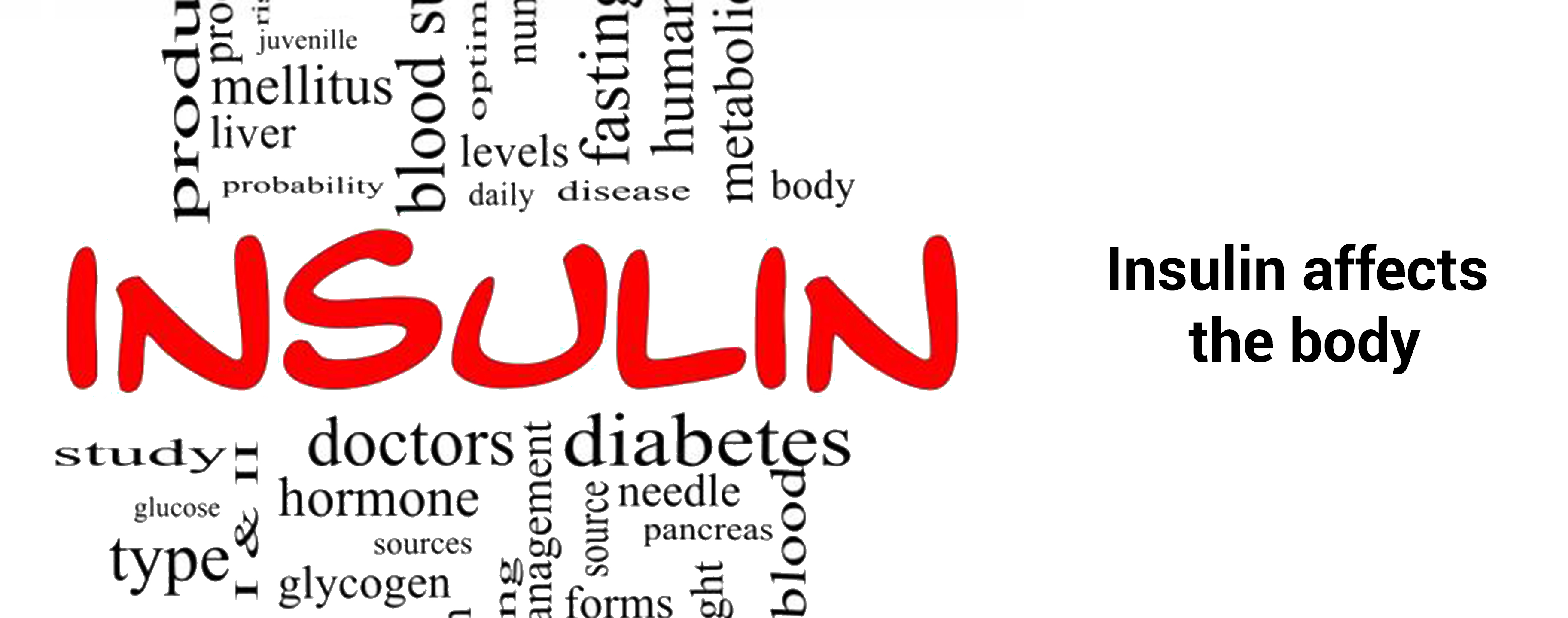Effects of insulin on the body