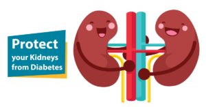 Protect Kidneys